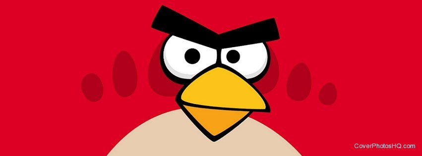 Red Bird Angry Birds Facebook Timeline cover photo